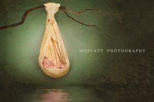 Sandra Moffatt 25